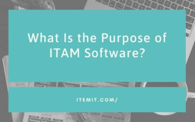 What is the purpose of IT Asset Management Software?