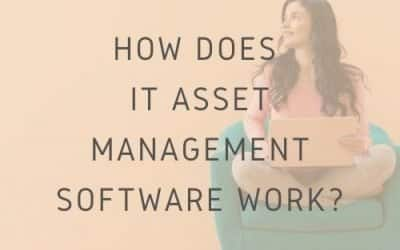 How Does IT Asset Management Software Work?