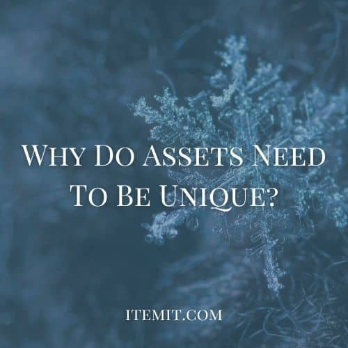 Why Do Assets Need To Be Unique?